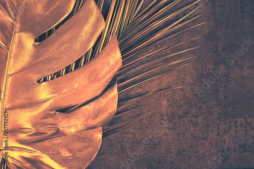 Fotografía  Closeup of bronze palm and monstera leaves on abstract dark purple textured background