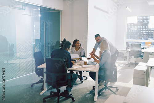 Fototapety, obrazy: Focused group of business colleagues having an office meeting to