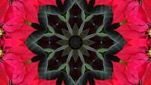 Very Beautiful Kaleidoscope Im...