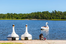 Swan Paddle Boats On A Beach