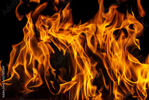 Fototapety, obrazy: Blazing fire flame on black background