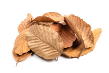 Dry Leaves Pile Isolated