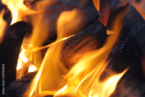 Closeup Fire Burning firewood. Abstract Flame. Selective Focus