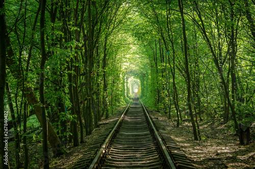 Türaufkleber Eisenbahnschienen Trees formed a tunnel which is called