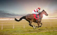 Race Horse With Jockey On The ...