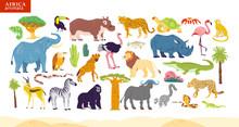 Vector Flat Illustration Of Africa Animals, Desert, Plants: Elephant, Rhino, Monkey, Zebra, Crocodile, Flamingo, Turtle, Palm Tree, Cactus Etc. For Children Alphabet, Infographics, Book, Banner, Tag.