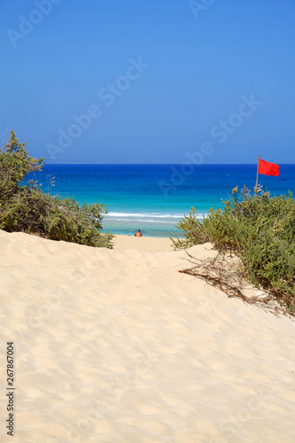 Fotografia  Sand Dunes and beach in National Park Corralejo, Fuerteventura.