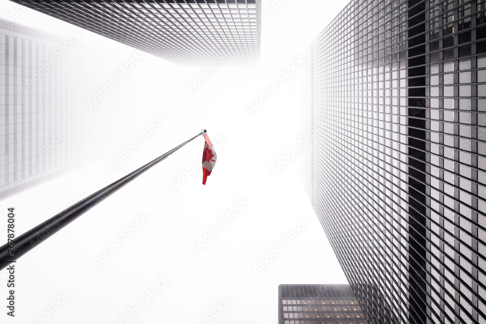 Fototapeta Looking up the Toronto financial district in city downtown with misty sky with flag of Canada