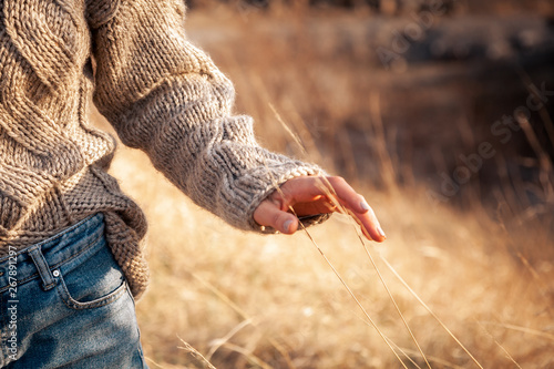 Foto auf AluDibond Cappuccino Close-up of a young woman in a knitted sweater and jeans walking through a wheat field and touching her ears of wheat