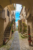 Fototapeta Na drzwi - Torri in Sabina (Italy) - A little medieval village in the heart of the Sabina, Lazio region, during the spring