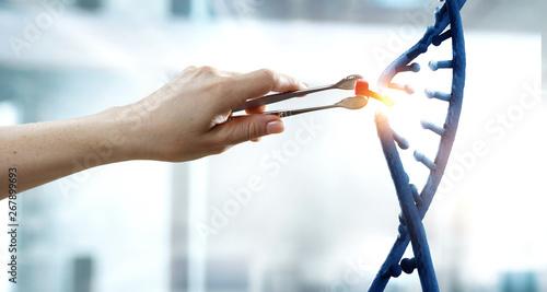 Fotografie, Obraz  DNA molecules design with female hand holding pincers