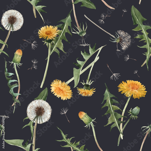 Watercolor dandelion blowball vector pattern