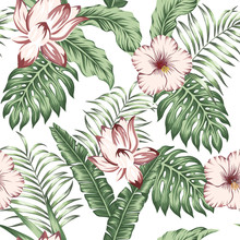 Green Tropical Leaves Brown Flowers White Background