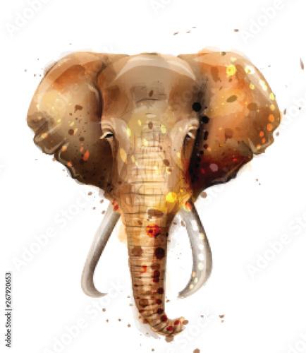 Słoń wektor akwarela. Dzikie ilustracje roczne widok z przodu