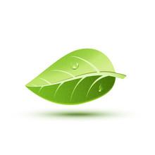 Green Ecology Concept Icon Lea...