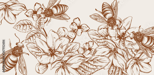 Leinwand Poster Honey, bees and flowers Vector line art card
