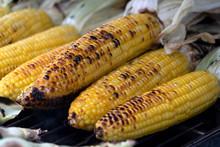 Roasted Corn Cob Barbecue