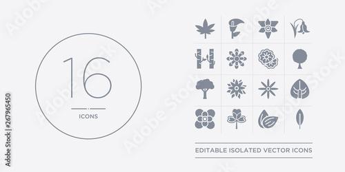 16 vector icons set such as acicular, almond, alstroemeria, anemone, anthurium contains aster, astrantia, baobab, beech Canvas Print