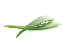 Aloe Vera Fresh Leaves Isolate...