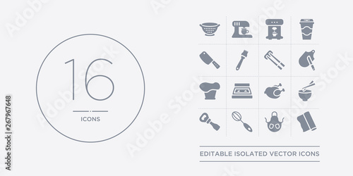 Photo 16 vector icons set such as aluminum foil, apron, beater, bottle opener, bowl contains broiler, bun warmer, chef hat, chopping board