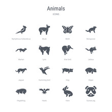 Set Of 16 Vector Icons Such As Guinea Pig, Hare, Hawk, Hegdehog, Hippo, Hog, Humming Bird, Jaguar From Animals Concept. Can Be Used For Web, Logo, Ui\u002fux
