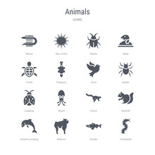 Set Of 16 Vector Icons Such As...