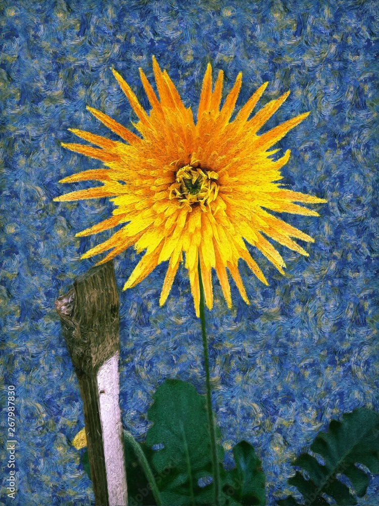 A painting of yellow colour Barberton daisy in the style of post-impressionist painter Vincent van Gogh. Also, known as Gerbera jamesonii, Transvaal daisy and Barbertonse madeliefie.