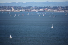 Sailboats In San Francisco Bay In San Francisco, California