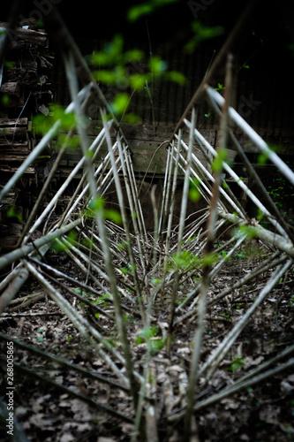 Photo Nature recapturing an iron system of rods