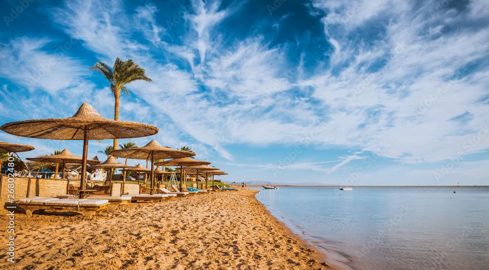 Fototapeta Relax under parasol on the beach of Red Sea, Egypt