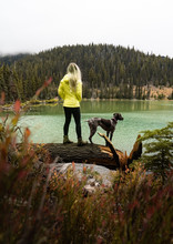 Woman Standing Beside German Shorthaired Pointer Outdoor During Day