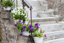 Ancient Stone Steps With Flowe...