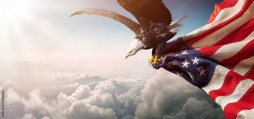 Fototapety, obrazy: Eagle With American Flag Flies In Freedom