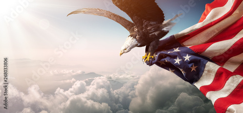 Photo  Eagle With American Flag Flies In Freedom