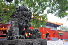 Yonghe Lama Temple Is The Larg...
