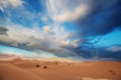 canvas print picture Sand dunes in California