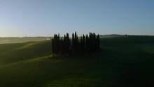 Amazing Drone Shot Of Cypresse...
