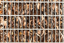 Dried Gum Leaves Clogging Storm Water Drain System.