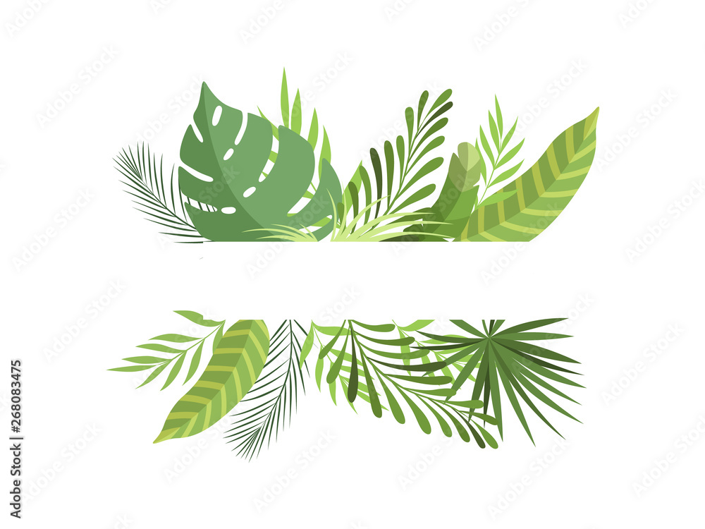 Fototapeta Foliage Border with Space for Your Text, Exotic Tropical Leaves, Banner, Poster, Wedding Invitation, Summer Greeting Card Design Element Vector Illustration