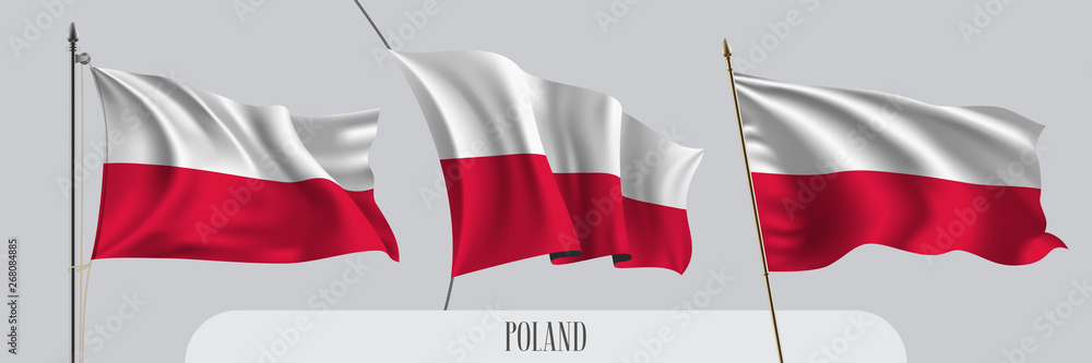 Fototapety, obrazy: Set of Poland waving flag on isolated background vector illustration