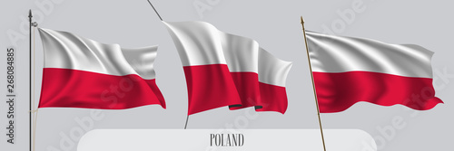 Set of Poland waving flag on isolated background vector illustration