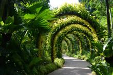 Flower Arches In A Beautiful Ornamental Garden