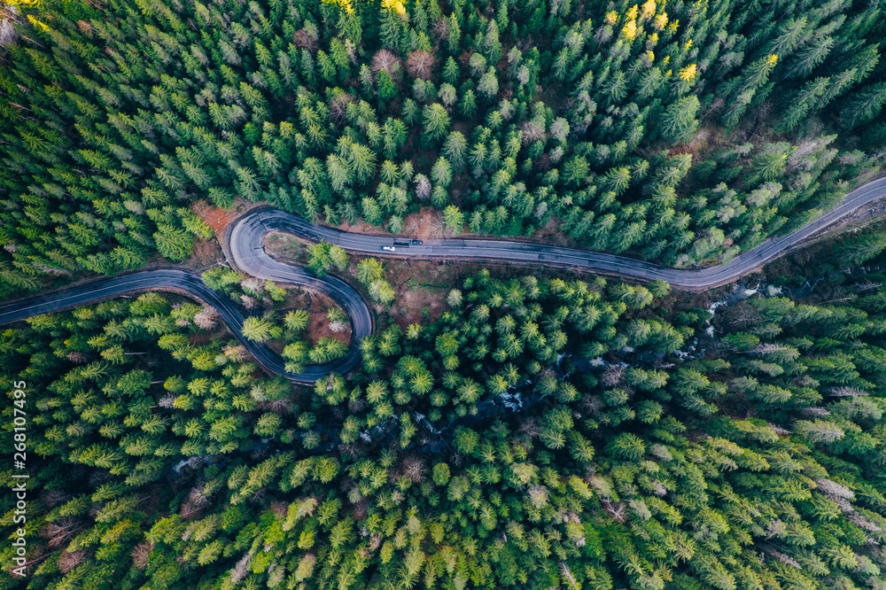 Fototapety, obrazy: Drone view of winding forest road