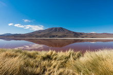 Laguna Roja, Salt Lake With Re...