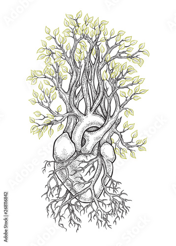Photo Stylized tree with anatomical heart in the roots
