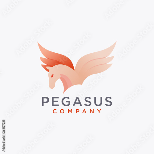 Canvas Print Modern abstract pegasus logo icon vector template on white background