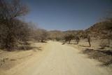 Fototapeta Sawanna - szutrowa zakurzona droga pomiędzy niskimi drzewami w afryce