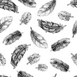 Beautiful seamless hand drawn feather pattern vector