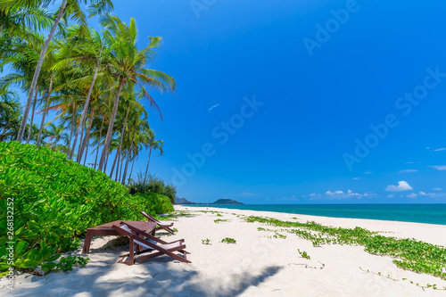 Printed kitchen splashbacks Zanzibar beach chair and palm trees foreground on tropical beach, Paradise Island for holidays and relaxation