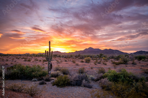 Photo sur Toile Aubergine Buetiful Sunset in the Desert, Quartzsite Arizona